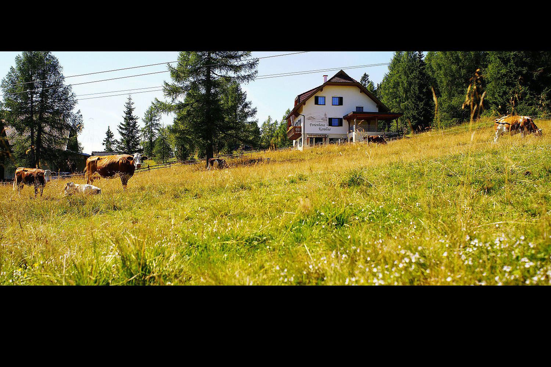 Sommer ums Ferienhaus Karoline am Hochrindl in Kärnten